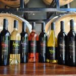 (300) Wine Bottles